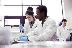 Program na studiach medycznych w Wielkiej Brytanii